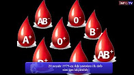 Artificial blood were transferred to patients  for the first time on November 20, In 1979