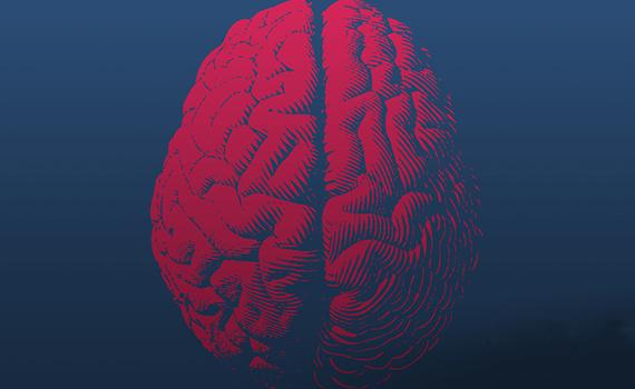 Ученые разработали биоморфную модель нейрона для создания быстрой и энергоэффективной нейросети