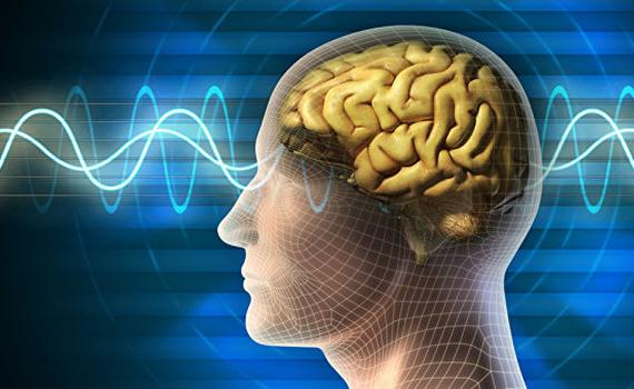 Сила ультразвука поможет вылечить болезнь Альцгеймера