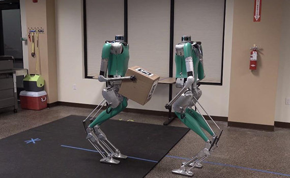 Digit Humanoid Robots Learn to Work Together