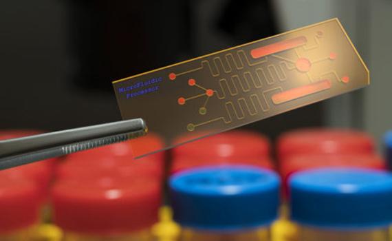 Новый биочип быстро выявляет генетические заболевания