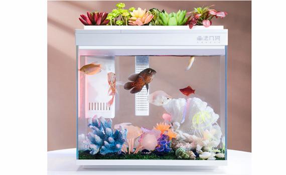 Xiaomi released a smart fish tank