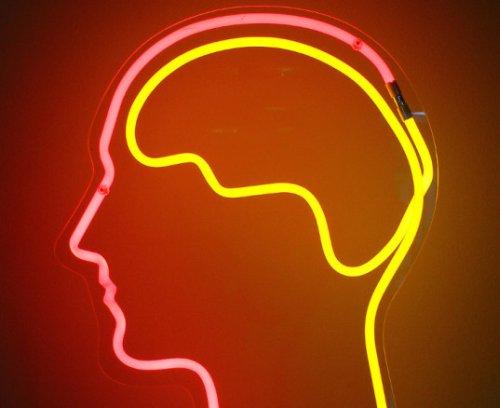 Alimlər bir insanın beynindən digərinin beyninə siqnalların birbaşa ötürülməsi imkanını təsdiq edirlər