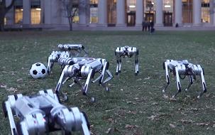 Mini Cheetah robots play soccer and do a synchronized backflip