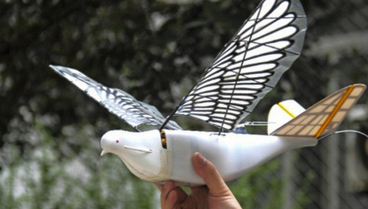 In China there are drones in the form of birds