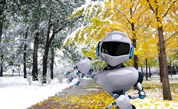"""Artificial Intelligence of Autumn"" or ""Winter Stage of Artificial Intelligence""?"