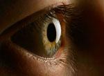 Alimlər gözün süni buynuzlu qişasını əldə ediblər