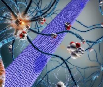 Beyinə implant edilən mikronasos epilepsiya xəstəliyi ilə mübarizə aparmağa kömək edəcək